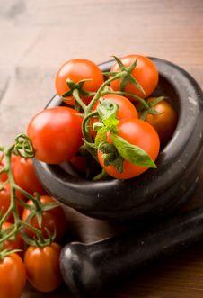Free Tomatoes Stock Photos - 18831983