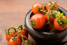 Free Tomatoes Stock Photography - 18832022