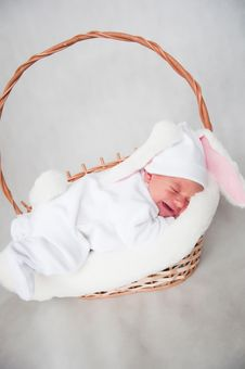 Free Little Baby Rabbit Stock Photos - 18832063