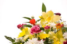 Free Magnificent Bouquet Stock Image - 18832571