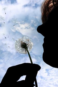Free Silhouetted Dandelion Being Gently Blown By Woman Stock Photo - 18833430