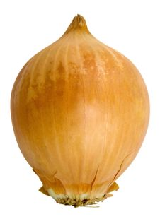 Free Onion Royalty Free Stock Photos - 18837798