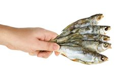 Free Hand Hold Few Salted Dried Fishes Stock Photos - 18839183