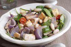 Free Chicken Salad Stock Image - 18839191