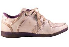 Sport Shoe Stock Photography