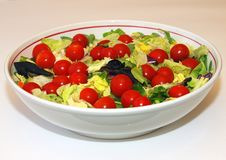 Free Garden Salad Royalty Free Stock Photo - 18841125