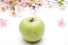 Free Green Apple Royalty Free Stock Photo - 18849055