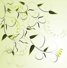 Free Abstract Green Floral Background Royalty Free Stock Photo - 18849305