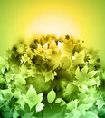 Free Green Leaves Background Royalty Free Stock Photo - 18851995