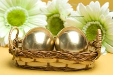 Free Easter Golden Eggs Stock Photography - 18850672