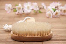 Free Massage Brush With Bristles Stock Images - 18850744