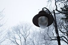 Free Old Stylish Street Lamp In A Park Stock Photography - 18850752