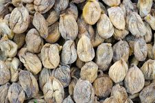 Free Dried Figs Royalty Free Stock Photo - 18851125