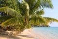 Free Beach At Island Koh Mak Stock Photo - 18869640