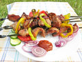 Free Barbecue Meat With Vegetables Stock Photography - 18869772