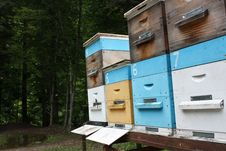 Free Apiary On Wheels Stock Images - 18864024