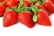 Free Bright Juicy Fresh Strawberries Stock Photography - 18864682