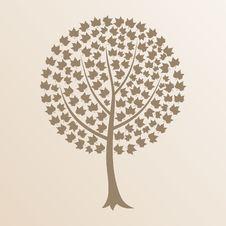Free Tree8 Stock Photography - 18865372