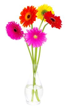 Free Flowers Royalty Free Stock Photos - 18865668