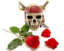 Skull And Red Rose With Petals Royalty Free Stock Image
