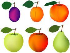 Plum Apricot Peach Apple Pear Stock Photos