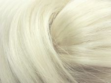 Free Blond Hair Texture Background Stock Photos - 18869573