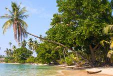 Free Beach At Island Koh Mak Stock Images - 18869624