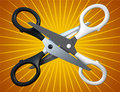 Free Pair Of The Scissors Stock Image - 18877571