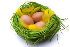 Free Eggs In Nest Royalty Free Stock Photography - 18870027