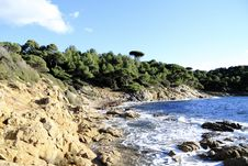 Free Site Of The Cape Lardier, France Royalty Free Stock Photos - 18870308