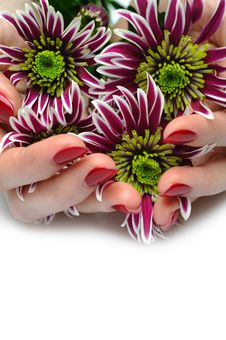 Free Beautiful Hand With Perfect Nail Red Manicure Royalty Free Stock Photography - 18872657