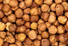 Free Hazelnuts Macro Background Royalty Free Stock Photo - 18874815