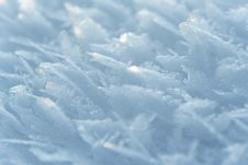 Free White Frost Royalty Free Stock Photos - 18877288