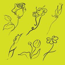 Free Flowers Design Set Stock Images - 18879114