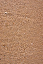 Free Beach Sand Texture Stock Image - 18883291