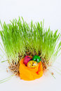 Free Easter Colorful Eggs Near Grass On Decorative Nest Royalty Free Stock Photography - 18885707