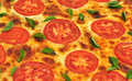 Free Basil And Tomato Pizza Royalty Free Stock Photography - 18888637
