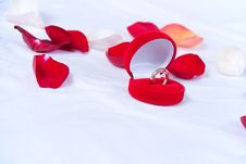 Free Wedding Rings In The Red Box Royalty Free Stock Photo - 18884555