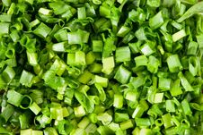Chopped Spring Onions Background Royalty Free Stock Images