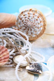 Free Jewellery Shells Stock Images - 18885544