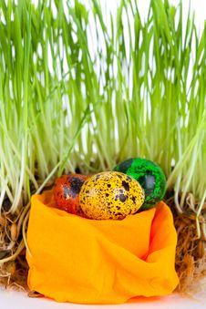 Free Easter Colorful Eggs Near Grass On Decorative Nest Stock Photos - 18885713
