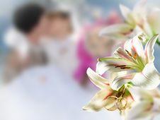 Free Wedding Royalty Free Stock Image - 18885946
