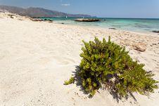 Free Elafonisi Beach (Crete, Greece) Stock Photos - 18886033