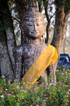 Free Buddha Royalty Free Stock Image - 18886456