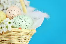 Free Easter Eggs Royalty Free Stock Photography - 18886927