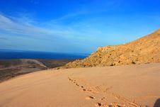 Free Socotra Island Stock Photo - 18887240