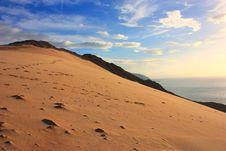 Free Socotra Island Stock Images - 18887354