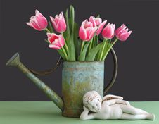 Free Tulips In Watering Can With Cherub Stock Image - 18889401