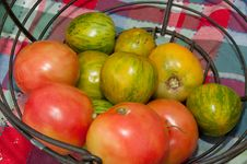 Free Heirloom Green And Red Tomatoes Stock Photography - 18889412