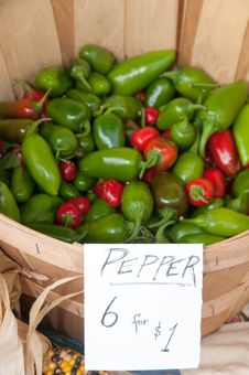 Free Organic Green And Red Chili Peppers Royalty Free Stock Images - 18889419